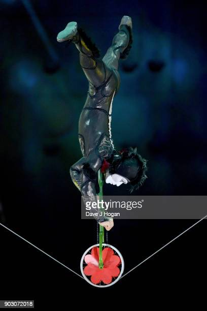 'Male Spider' performs during the Cirque du Soleil 'OVO' dress rehearsal at Royal Albert Hall on January 9 2018 in London England