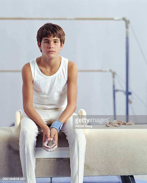 Male teenage gymnast (13-15) sitting on pommel horse, portrait