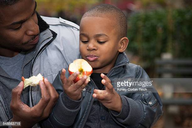 Male toddler and father eating apples in park