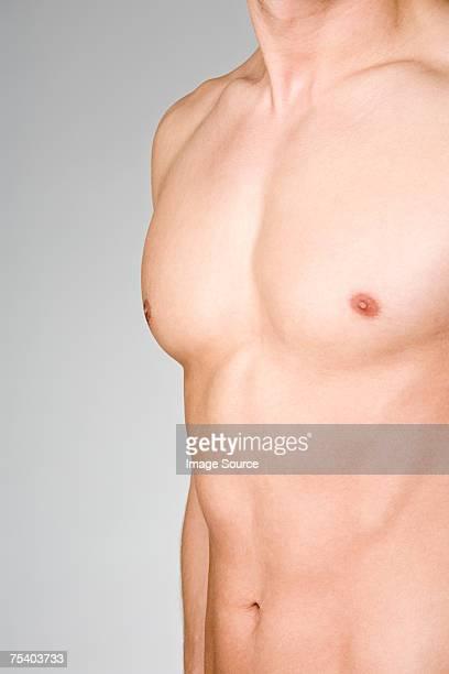 masculino torso - imagem tonalizada - fotografias e filmes do acervo