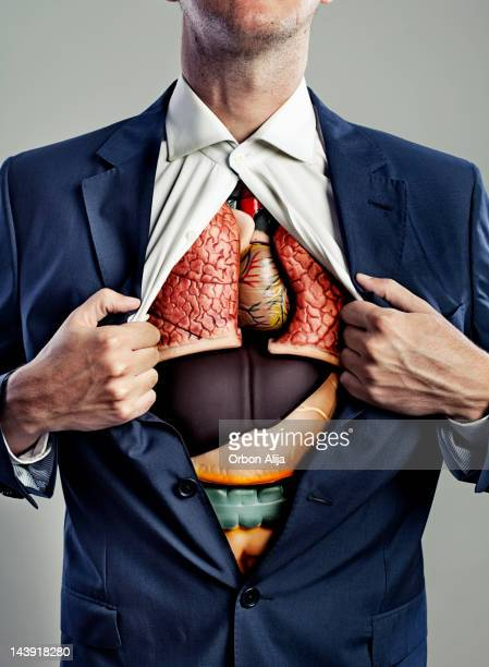 male torso with internal organs visible - human internal organ stock photos and pictures