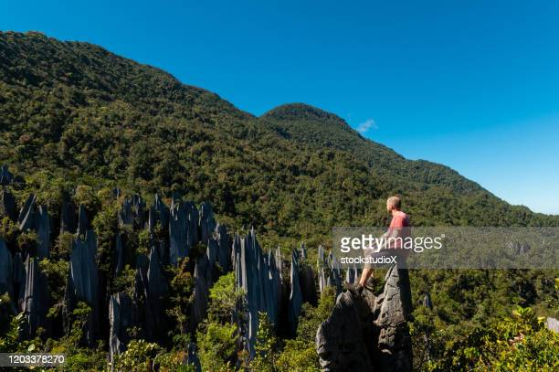 male tourist exploring the pinnacles hike in mulu national park - sarawak state stock pictures, royalty-free photos & images