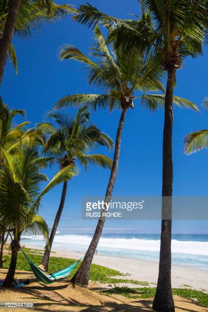 Male tourist reclining on beach hammock by Indian Ocean, Reunion Island
