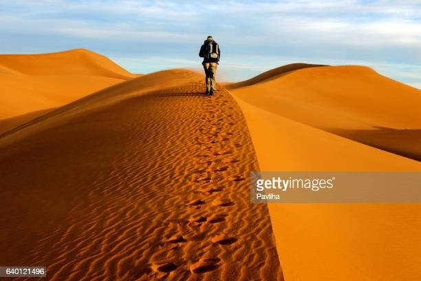 male tourists walking on the sand dunes, morning, mhamid, morocco - merzouga stock pictures, royalty-free photos & images