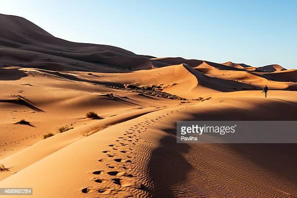 ,male marcher sur les dunes de sable, erg chebbi matin, maroc - homme marocain photos et images de collection