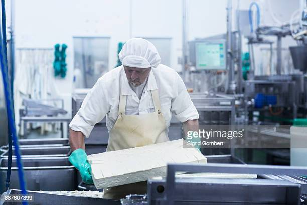 male worker working in organic tofu production factory - sigrid gombert stock pictures, royalty-free photos & images