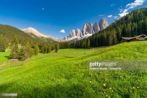 malga zannes in spring, puez odle, funes, italy - luogo d'interesse internazionale foto e immagini stock