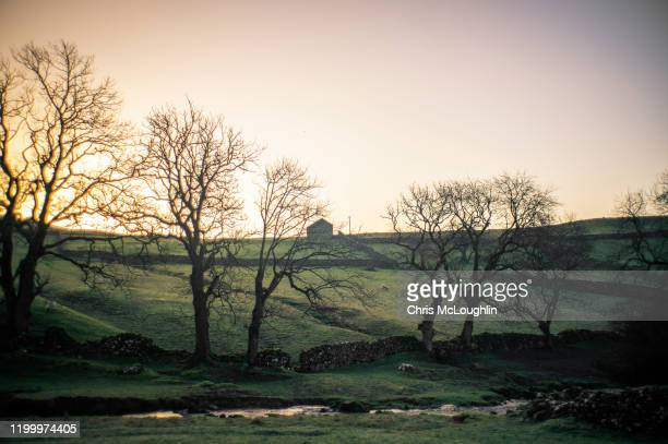 malham in the yorkshire dales national park - limestone pavement stock pictures, royalty-free photos & images