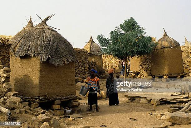 Mali Dogon Country Typical Dogon Village With Strawhatted Granaries