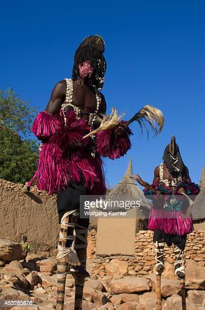 Mali Near Bandiagara Dogon Country Bandiagara Escarpment Traditonal Dogon Dance In Village Dancer On Stilts Dressed As Woman