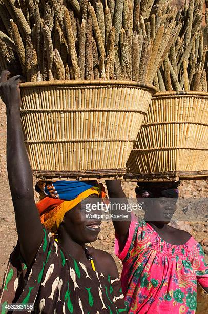 Mali Near Bandiagara Dogon Country Songho Dogon Village Women Carrying Baskets With Millet