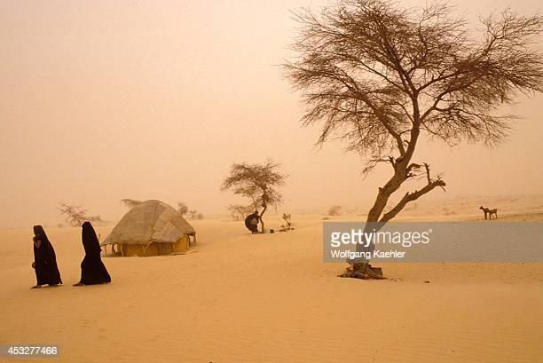 Mali Near Timbuktu Tuareg Camp In Harmattan Dust Storm Edge Of Sahara