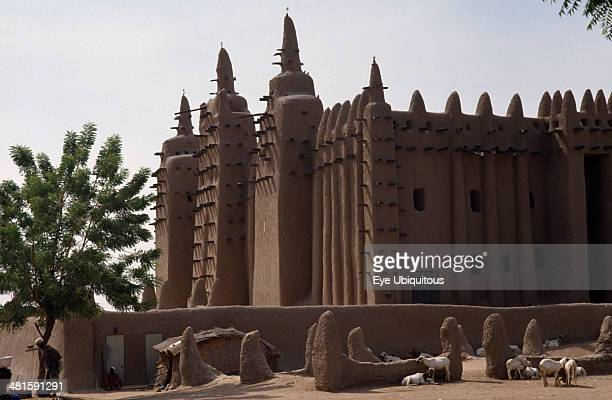 Mali Sahel Djenne The Grand Mosque Mud plastered exterior with sheep lying in shade of walls in foreground