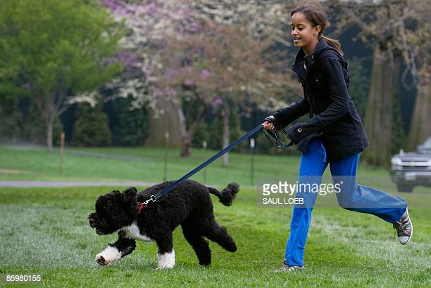 Malia Obama daughter of US President Barack Obama walks her new sixmonth old Portuguese water dog Bo on the South Lawn of the White House in...