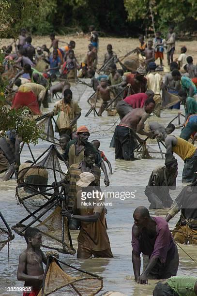 Malian men and boys fishing in river