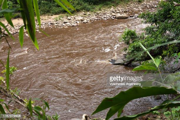 maliau river, maliau basin, borneo, malaysia - argenberg stock pictures, royalty-free photos & images