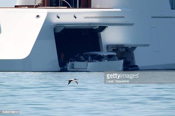 EXCLUSIVE Malibu California August 31 2010 Andrey Melnichenko and his wife Aleksandra Nikolic Melnichenko welcome friends onboard of their 300...