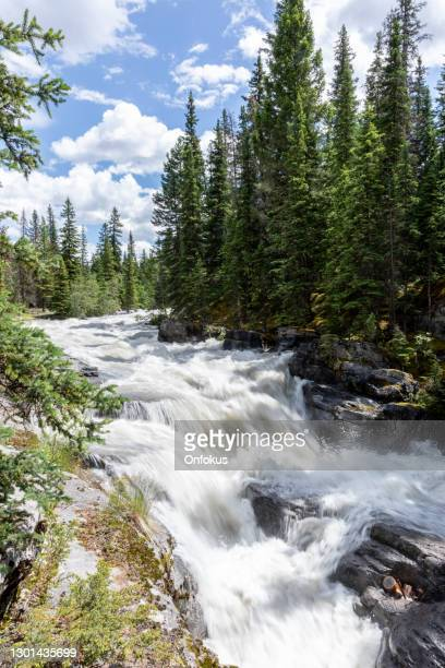 maligne canyon falls jasper national park, alberta, canada - freshwater stock pictures, royalty-free photos & images