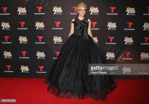 Malillany Marin attends the 'Jose Jose El Principe De La Cancion' Telemundo tv series premiere at Four Seasons hotel on January 11 2018 in Mexico...