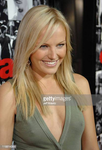 """Malin Akerman during """"Entourage"""" Third Season Premiere in Los Angeles - Red Carpet at The Cinerama Dome in Los Angeles, California, United States."""