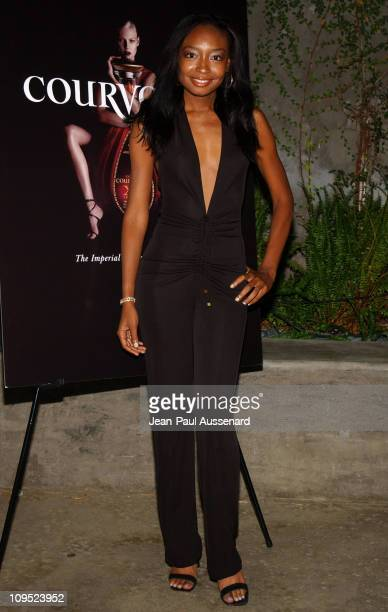 Malina Moye during Russell Simmons Work HardPlay Harder Lounge Sponsored by Courvoisier and W Hotel Arrivals at Poolside at W Hotel in Westwood...
