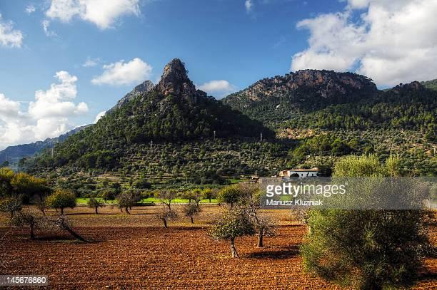 Mallorca  Island landscape