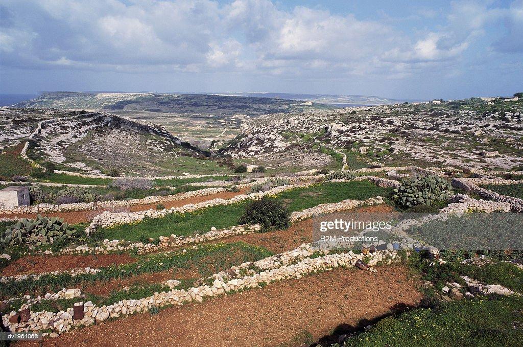 Maltese Countryside : Stock Photo