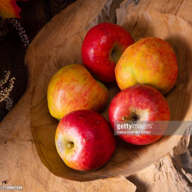 malus sylvestris, the tasty european crab apple, - chilli crab stock photos and pictures