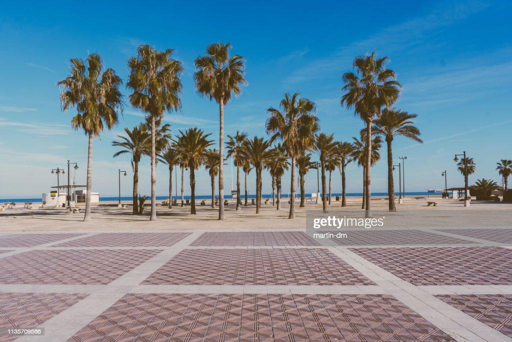 マルバロッサ・ビーチ (バレンシア) : ストックフォト