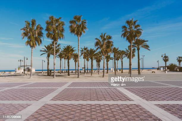 malvarrosa beach in valencia,spain - valencia spain stock pictures, royalty-free photos & images
