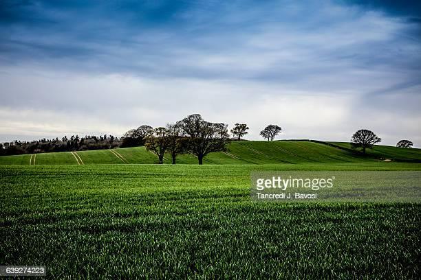malvern hills - bavosi stock photos and pictures
