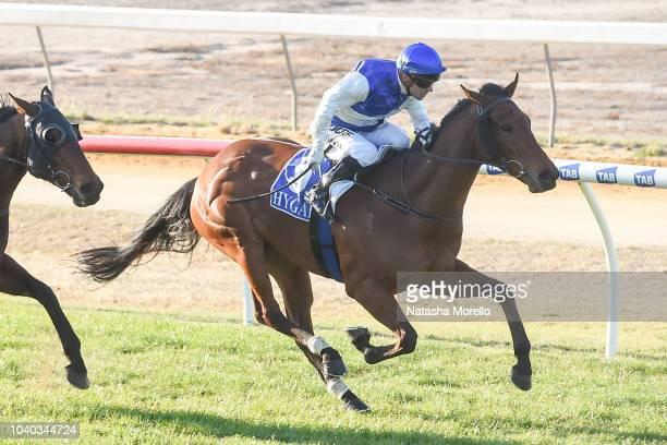Mambo Italiano ridden by Stan Tsaikos wins the Mildura Holden and HSV BM58 Handicap at Mildura Racecourse on September 25 2018 in Mildura Australia