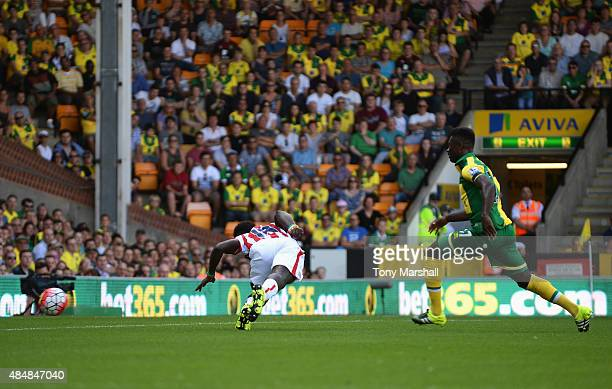 Mame Biram Diouf of Stoke City scores his team's first goal during the Barclays Premier League match between Norwich City and Stoke City at Carrow...