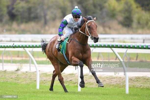 Mamelon ridden by Jarrod Fry wins the bet365 Maiden Plate at Kyneton Racecourse on March 13 2020 in Kyneton Australia