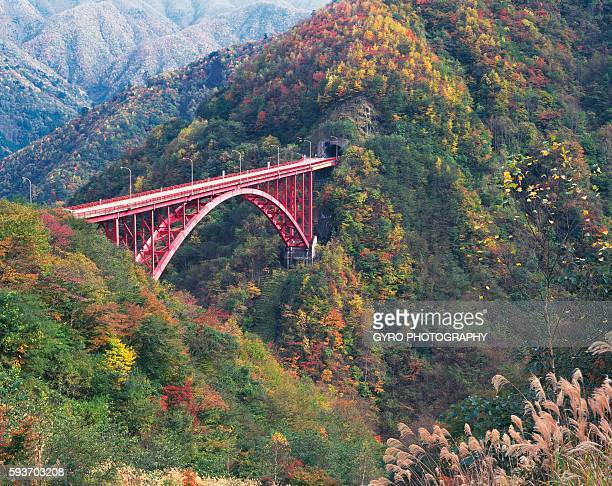 mameyaki bridge, chichibu, saitama prefecture, japan - 埼玉県 ストックフォトと画像