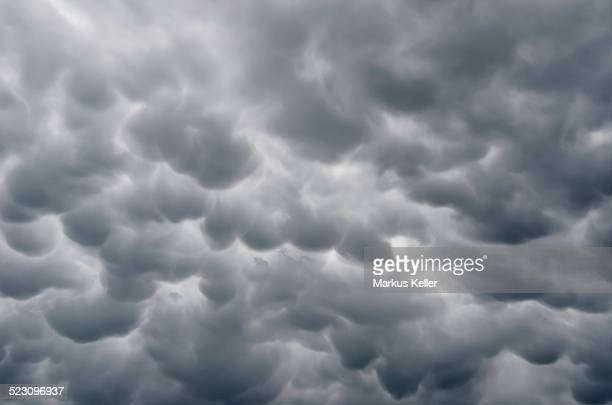 Mammatus clouds, cellular pattern of pouches hanging underneath the base of a thunderstorm cloud, also known as Cumulonimbus cloud, Baden-Wuettemberg, Germany, Europe