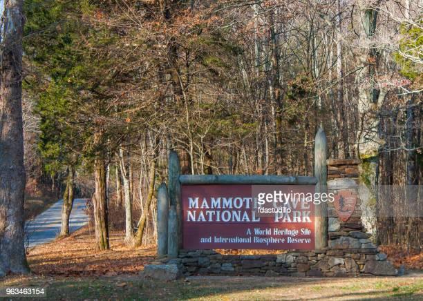 parque nacional cuevas de mamut - kentucky - kentucky fotografías e imágenes de stock