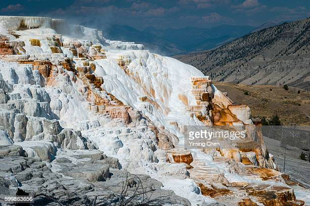 mammoth hot springs in yellowstone national park - 100th anniversary stock pictures, royalty-free photos & images