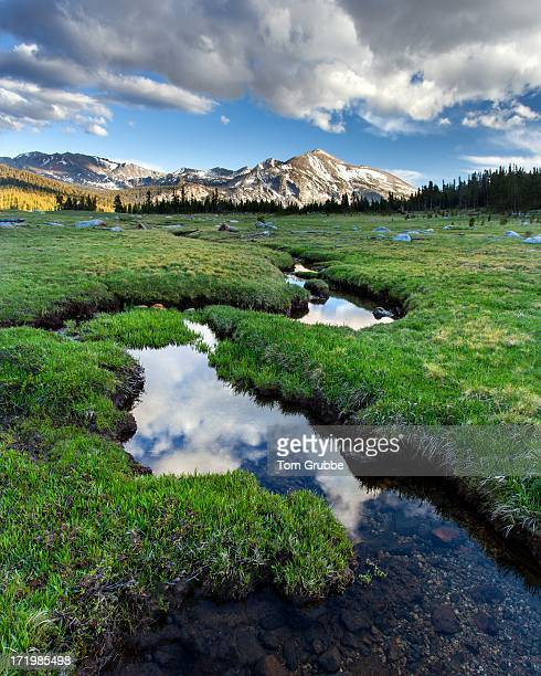 mammoth peak and meadow - tom grubbe stock pictures, royalty-free photos & images