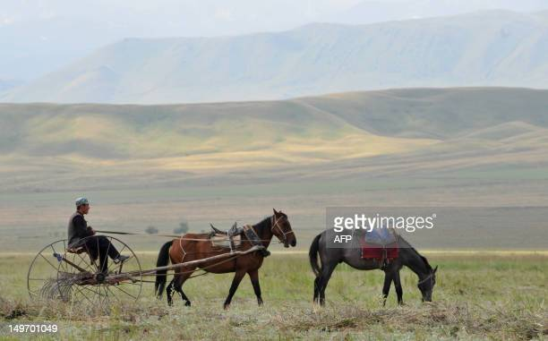 Man a horse drawn buggy racking dry grass on the Suu-Samyr plateau 500 meters above the sea level, along the ancient Silk Road from Bishkek to Osh,...