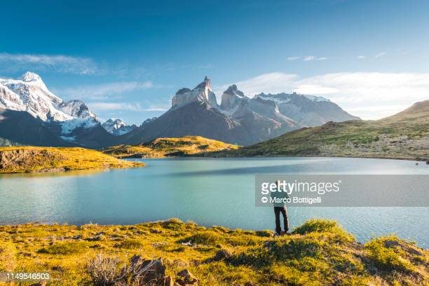 man admiring the view at torres del paine national park, chile - patagonia foto e immagini stock