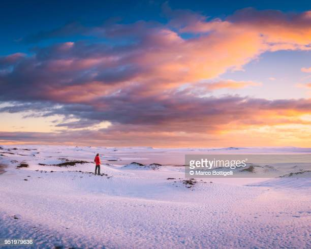 man admiring the winter landscape at sunset, iceland. - colour manipulation stock pictures, royalty-free photos & images