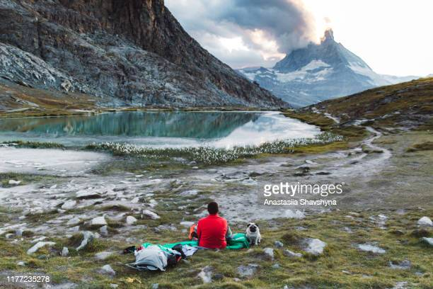 man and a dog relaxing near beautiful mountain lake with matterhorn view - vertebrate stock pictures, royalty-free photos & images