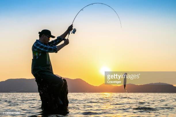 man and a fishing rod looking out at fish after lifting up the fish from the water. - bass fishing stock pictures, royalty-free photos & images