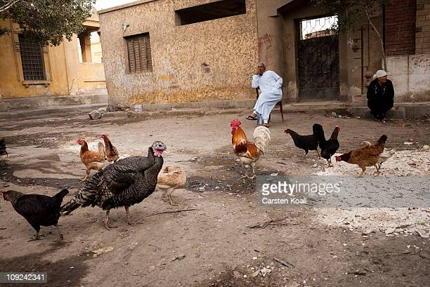 A man and a woman sitting with chicken in the front of the entrance to a mausoleum at the Al Qarafa Cemetery on Feburary 15 2011 in Cairo Egypt Over...