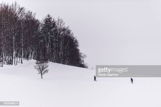 A man and a woman walk on a snowy field on January 11 2019 in JauernickBuschbach Germany