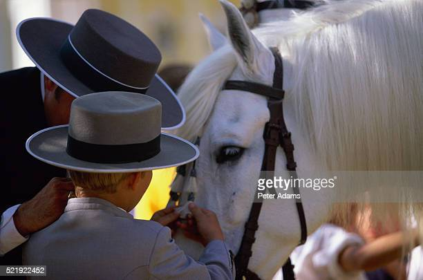 man and boy petting white horse - peter adams stock pictures, royalty-free photos & images