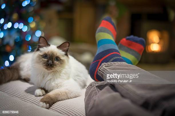 Man and cat having a relaxing time together