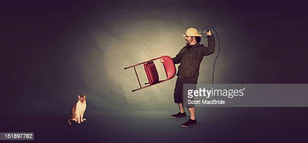 man and cat - scott macbride stock pictures, royalty-free photos & images