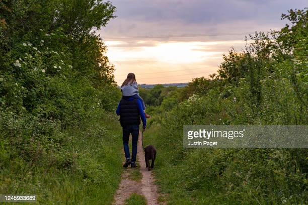 man and daughter taking dog for a walk - rural scene stock pictures, royalty-free photos & images
